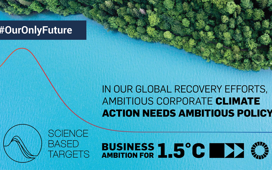 5 Key Areas for 2021 Business Climate Action